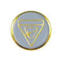 Distintivo de Pioneiro-1476200062